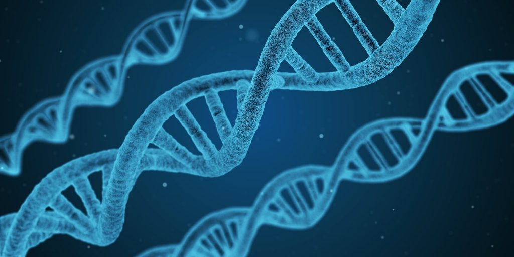 The future of medicine - editing our genes