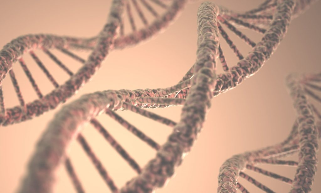 World's first living organism with fully redesigned DNA created