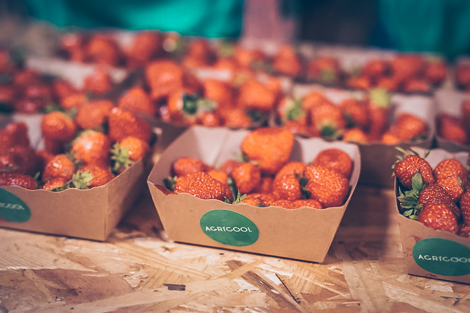 Agricool - Reinventing the Way Strawberries are Grown