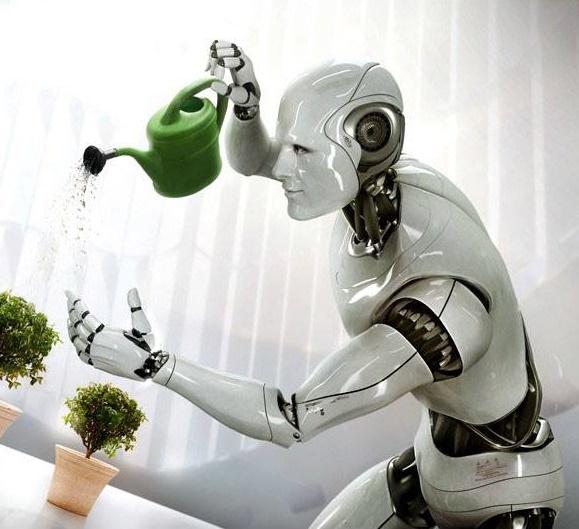 Top 10 assistant robots in 2017
